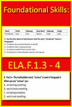 3rd Grade FSA Test Prep Reading Practice Test - FREE!