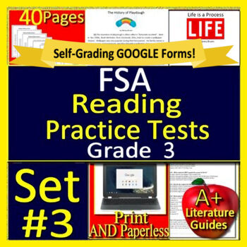 3rd Grade FSA Reading Test Prep Practice Set, Print and Paperless - 2019  Style