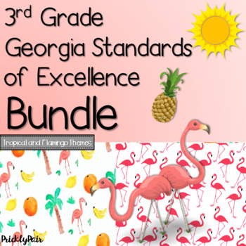 3rd Grade GSE Georgia Standards of Excellence Posters Bundle -Tropical