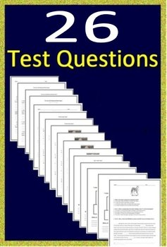 3rd Grade ISTEP + Test Prep ELA Practice Tests - Get Ready!