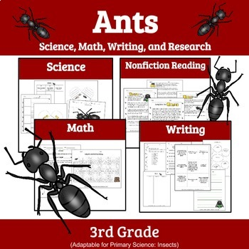 Printable Bugs: Units on Butterflies, Bees, Ants, and Spiders