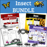 3rd Grade Insect Unit BUNDLE: Ants, Bees, and Butterflies