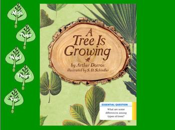 3rd Grade Journeys 2017 SMARTboard A Tree is Growing