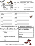 3rd Grade Journeys Review Sheet Lesson 21