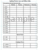 3rd Grade: L-14 Aero and Officer Mike Journeys Common Core Spelling Worksheet