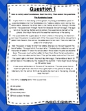 3rd Grade Language Arts Test Prep FREEBIE