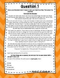 3rd Grade Language Arts Test Prep IREAD Task Cards Set 3