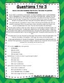 3rd Grade Language Arts Test Prep Set 2