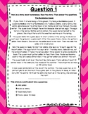 3rd Grade Language Arts Test Prep Set 5