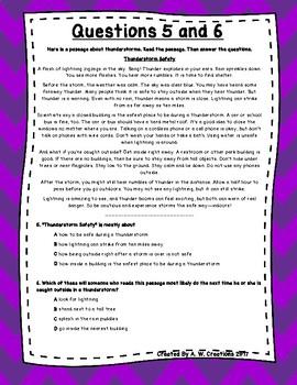 3rd Grade Language Arts Test Prep Set 8