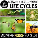Life Cycles: Growth and Development of Organisms - 3rd Gra