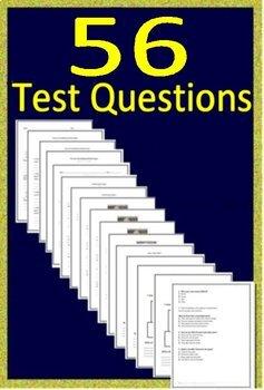 3rd Grade MCA Test Prep ELA Practice Tests Minnesota Printable AND Self-Grading!