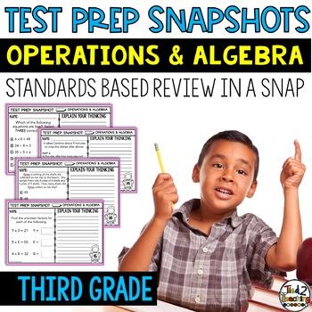 3rd Grade Math: Quick Checks / Exit Slips (Operations & Al