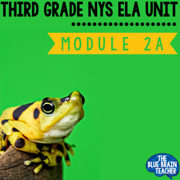 3rd Grade Module 2A Unit 1, Unit 2, Unit 3  BUNDLE EngageNY