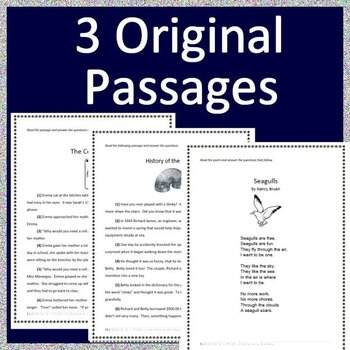 3rd Grade NH SAS (New Hampshire Statewide Assessment System) Practice Tests #2
