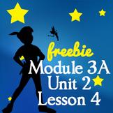 3rd Grade NYS ELA Module 3A Unit 2 Lesson 4   Common Core