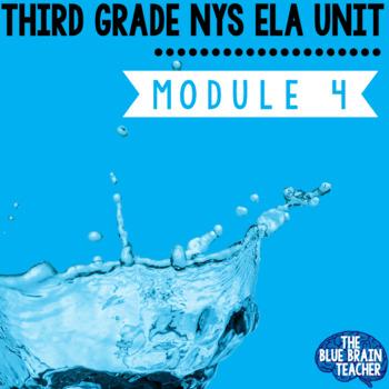 3rd Grade NYS ELA Module 4 Unit 1, 2, 3 All Lessons