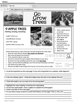 3rd Grade National Geographic Reach for Reading (Unit 3 Week 4 Supplement)