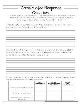 3rd Grade Performance Task- Life Cycles with Editable Google Doc