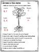 3rd Grade Plants Test: Big Idea 14