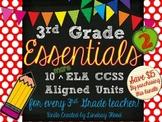 3rd Grade Reading Essentials - 2