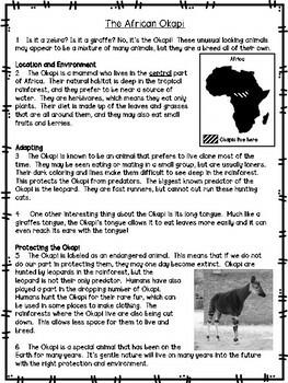 3rd Grade Reading Passage #5