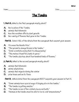 3rd Grade FSA Informational Text BUNDLE by Stephanie ...