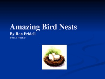 3rd Grade Reading Street Amazing Bird Nests Vocab Power Point