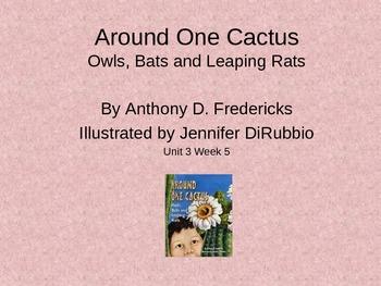 3rd Grade Reading Street Around One Cactus Vocab Power Point