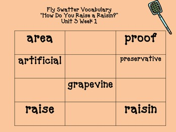 3rd Grade Reading Street Fly Swatter Game Unit 3