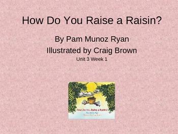 3rd Grade Reading Street Raisin Vocab Power Point