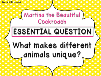 Reading Wonders 3rd Grade Essential Questions