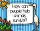 3rd Grade Reading Wonders Whooping Cranes in Danger {10 Literacy Activities}