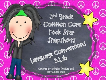 3rd Grade Rock Star Snapshots  3.L.1b: Regular and Irregular Nouns