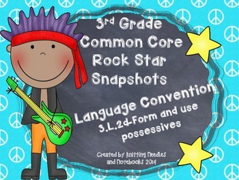 3rd Grade Rock Star Snapshots  3.L.2d: Form and Use Possessives