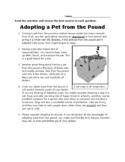 3rd Grade STAAR Persuasive Reading Passage Short