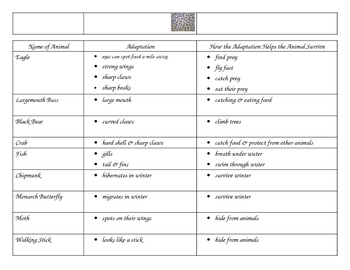 3rd Grade Science Animal Adaptation Graphic Organizer/Chart