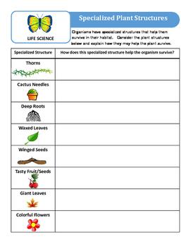 3rd Grade Science Assessment Set