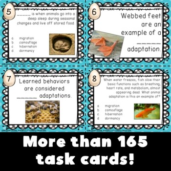 3rd Grade Science Task Card Bundle