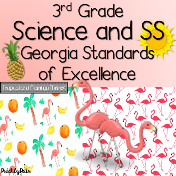 3rd Grade Science and SS GSE Georgia Standards of Excellence Posters -Tropical