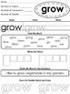 3rd Grade Sight Word Worksheets