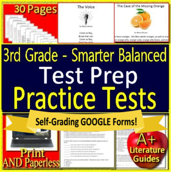 3rd Grade Smarter Balanced Test Prep ELA - SBAC - Printable AND Paperless