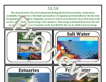 3rd Grade South Carolina Concept Board: Life Science-Environments and Habitats
