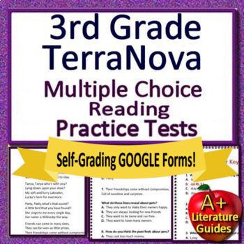 3rd Grade TerraNova Test Prep - Reading ELA Practice Tests Terra Nova