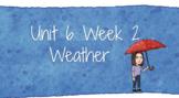 3rd Grade - Unit 6 Week 2 Wonders Companion - Google Slides (editable) 2020-2021
