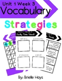 3rd Grade Wonders Unit 1 Week 3 Vocabulary Strategies