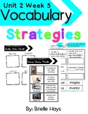 3rd Grade Wonders Unit 2 Week 5 Vocabulary Strategies