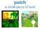 3rd Grade:Journeys Lesson 8 The Harvest Birds Printable Vocabulary Cards