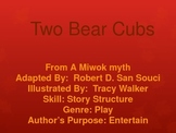 3rd L-19 Two Bear CubsVocabulary/Spelling/Comprehension Po