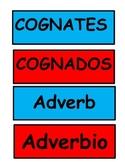 3rd grade Cognates